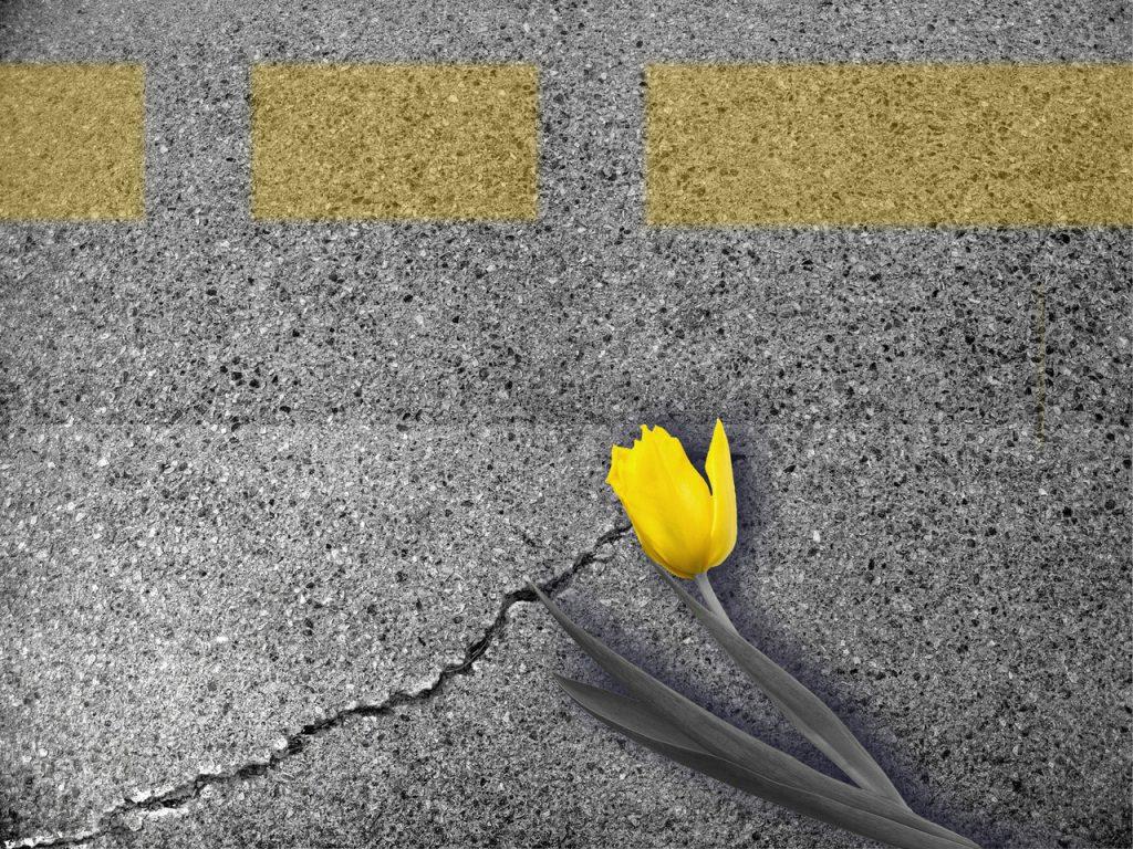 cracking concrete roads